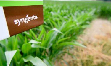 Syngenta ziet omzet en winst dalen