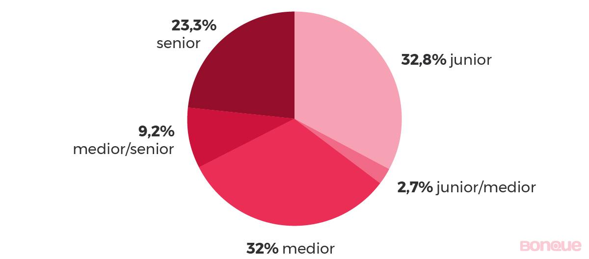 populairste ICT-banen