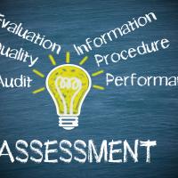 Assessment: het gewapende oordeel