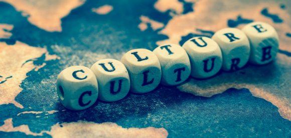 De 5 organisatie-lessen van de Luizenmoeder