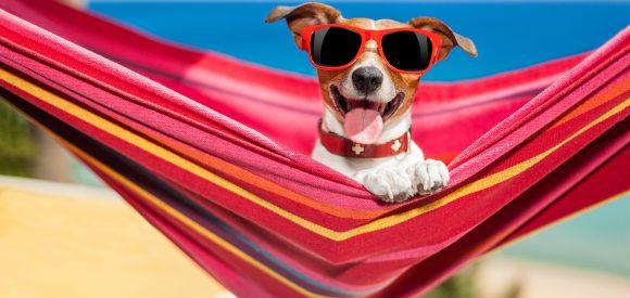 Vakantie opnemen – waar je op moet letten