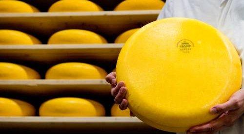 Nieuwe cao voor werknemers zuivelindustrie