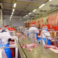 Inspectie SZW legt vleesfabriek stil