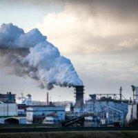Boze Tata-medewerkers blokkeren poorten IJmuiden